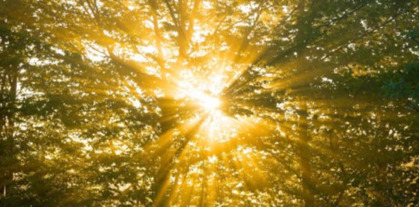 Ученые нашли новый способ превратить солнечный свет в топливо