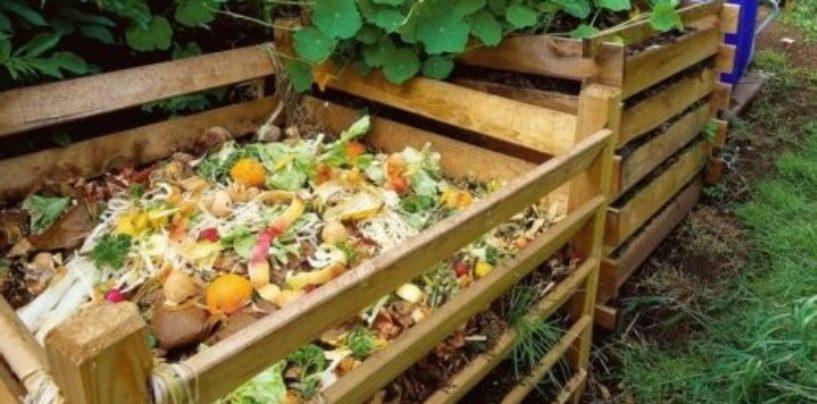 Положительные и отрицательные стороны производства компоста