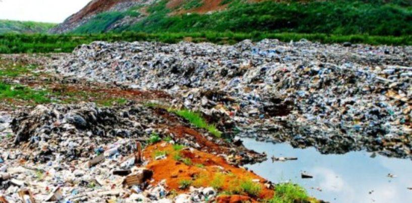 В Карелии поймали нелегальные мусоровозы из Петербурга