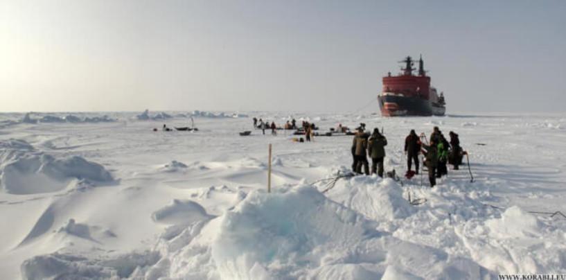 Уникальная Арктика. Что привлекает иностранных учёных на Ямал?