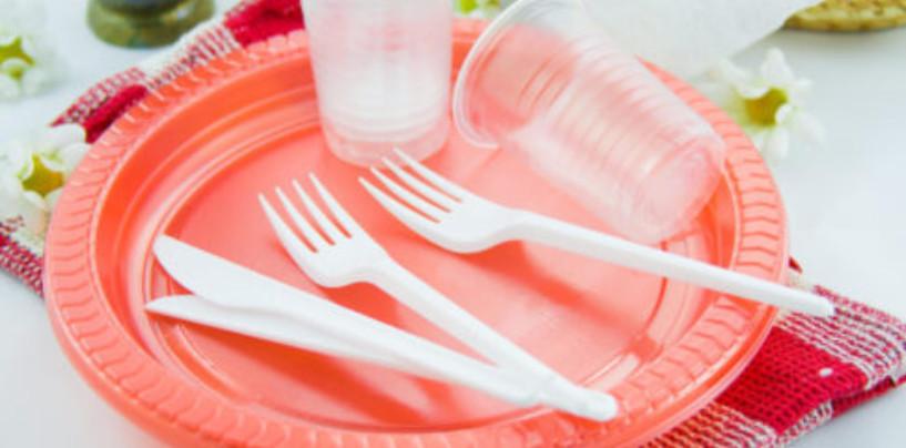 Россия и весь мир запрещают одноразовый пластик: 10 жизнеутверждающих примеров