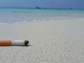 Океан погибает из-за миллиардов выброшенных окурков
