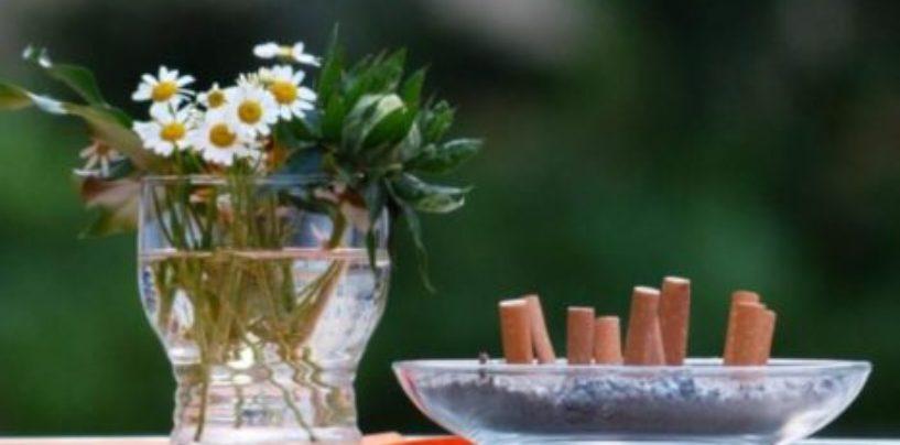 Учёные выяснили, как курение вредит экологии