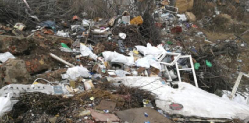 Воронежские активисты ОНФ добились ликвидации крупной несанкционированной свалки в Губарево