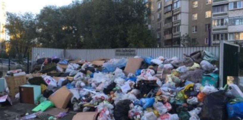 Глава Челябинска Евгений Тефтелев поблагодарил губернатора за «колоссальный вывоз мусора»