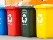 Проблема раздельного сбора мусора в России гораздо шире тарифов ЖКУ — эколог