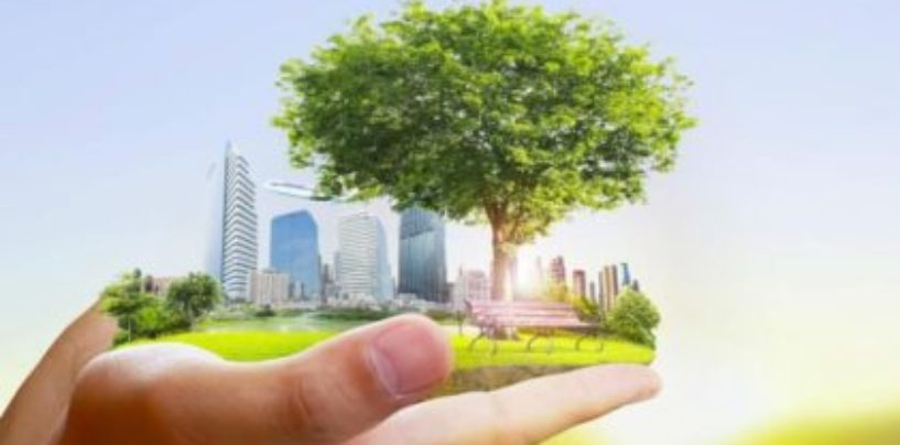 Только шесть городов России вошли в национальный проект «Экология»