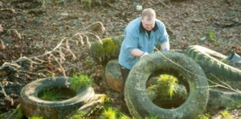 Активисты Петербурга и Ленобласти очищают леса от покрышек