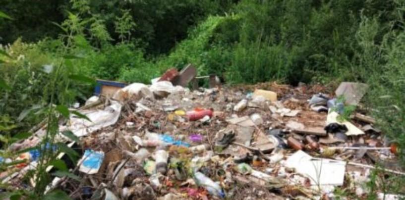 В Саратовской области чиновник «убрал» свалку с помощью фотошопа