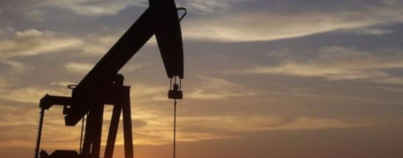 Защитники экологии из Великобритании получили реальные сроки от судьи-родственника нефтяников