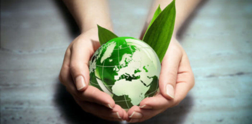 Бытовые отходы – на билет в театр. В Москве проходит акция «Искусство ради экологии»