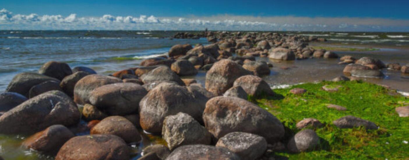 В Финском заливе планируют построить искусственные острова за 400 млрд рублей. Чем они опасны для Петербурга и как связаны с «кремлевским поваром» Пригожиным