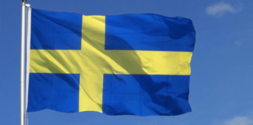 Нижегородская область и Швеция обменялись опытом переработки отходов