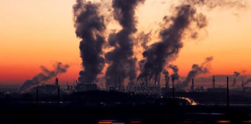 Мусорные миллиарды: кто заработает на сжигании отходов в Подмосковье