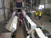 «Российский экологический оператор» изучил опыт переработки отходов в ФРГ