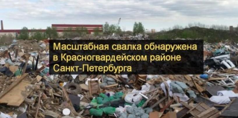 Масштабная свалка обнаружена в Красногвардейском районе Санкт-Петербурга