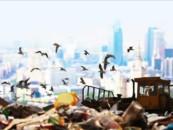 Специальный проект газеты Коммерсант — посвященный переработке мусора в России «Грязь большого города» (часть 1 / в 4х частях)