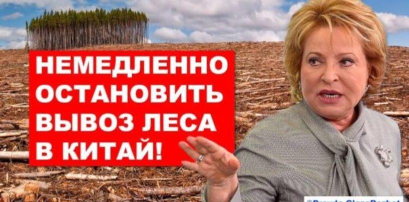 Злободневные видео-материалы по экологии и мусорной реформе