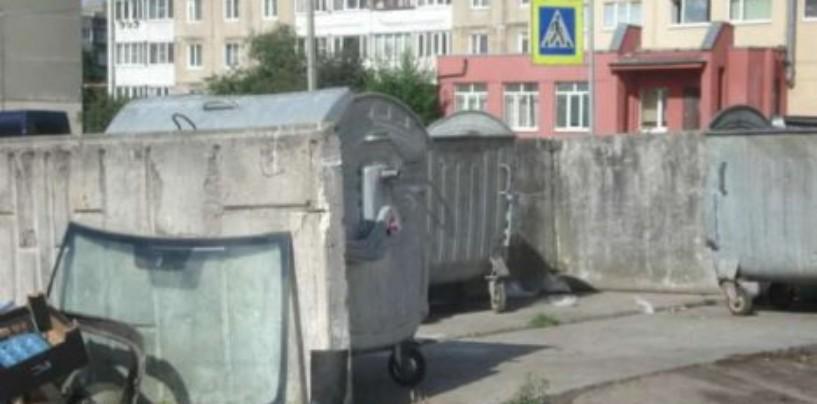 Проведение общественной инспекции территории гатчинского района СПб