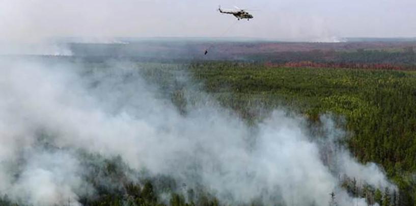 Ученые подсчитали объем выбросов СО2 после пожаров в Сибири