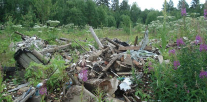 Информационное сообщение представителя Общественного экологического совета при Губернаторе Ленинградской области в г. Гатчина и Гатчинском районе.