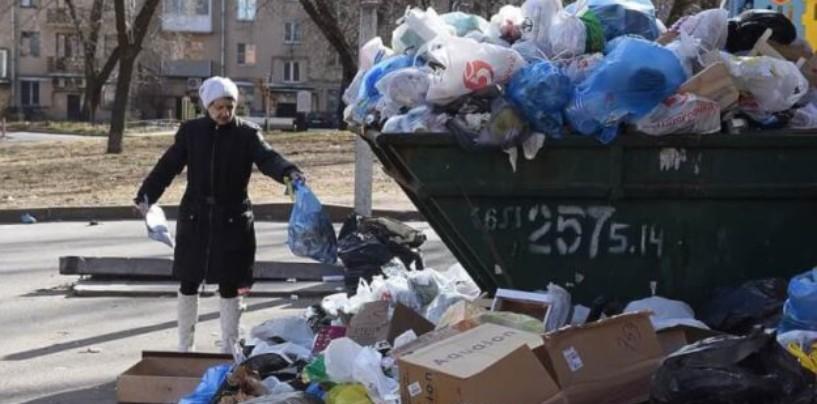 Всего неделя осталась до того, как «мусорная» реформа стартует на территории всей Ленобласти